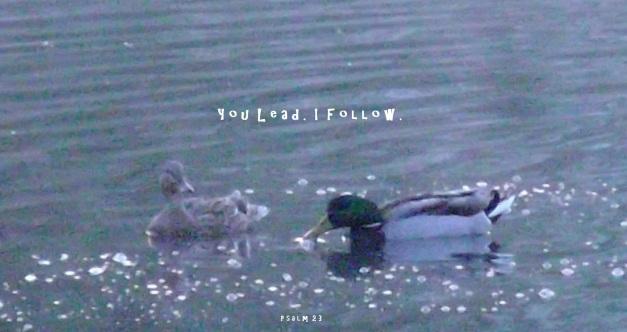 You lead. I follow.